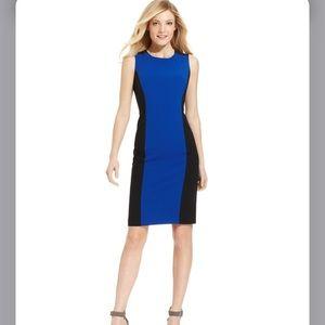 Calvin Klein Sleeveless Color Block Sheath Dress 6